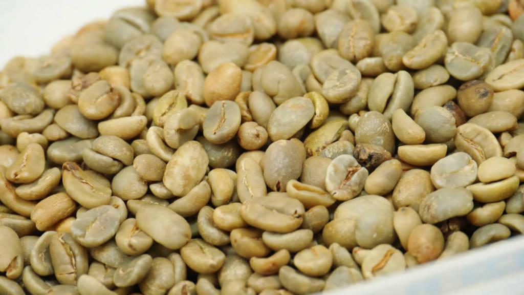サニーサイトコーヒー 生豆